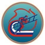 эмблема ППС