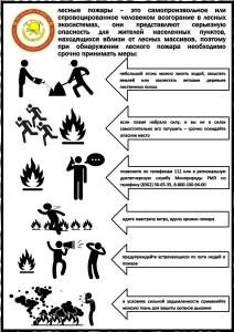 Действия при обнаружении лесного пожара