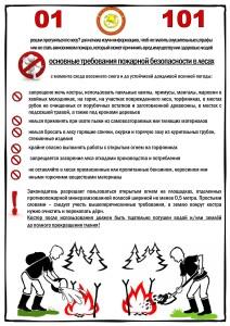 Основные требования пожарной безопасности в лесах